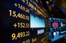 Инвесторы на рынке ценных бумаг: основные типы инвесторов