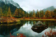 Кому нужна бесплатная земля на Дальнем Востоке: бесплатный гектар от государства
