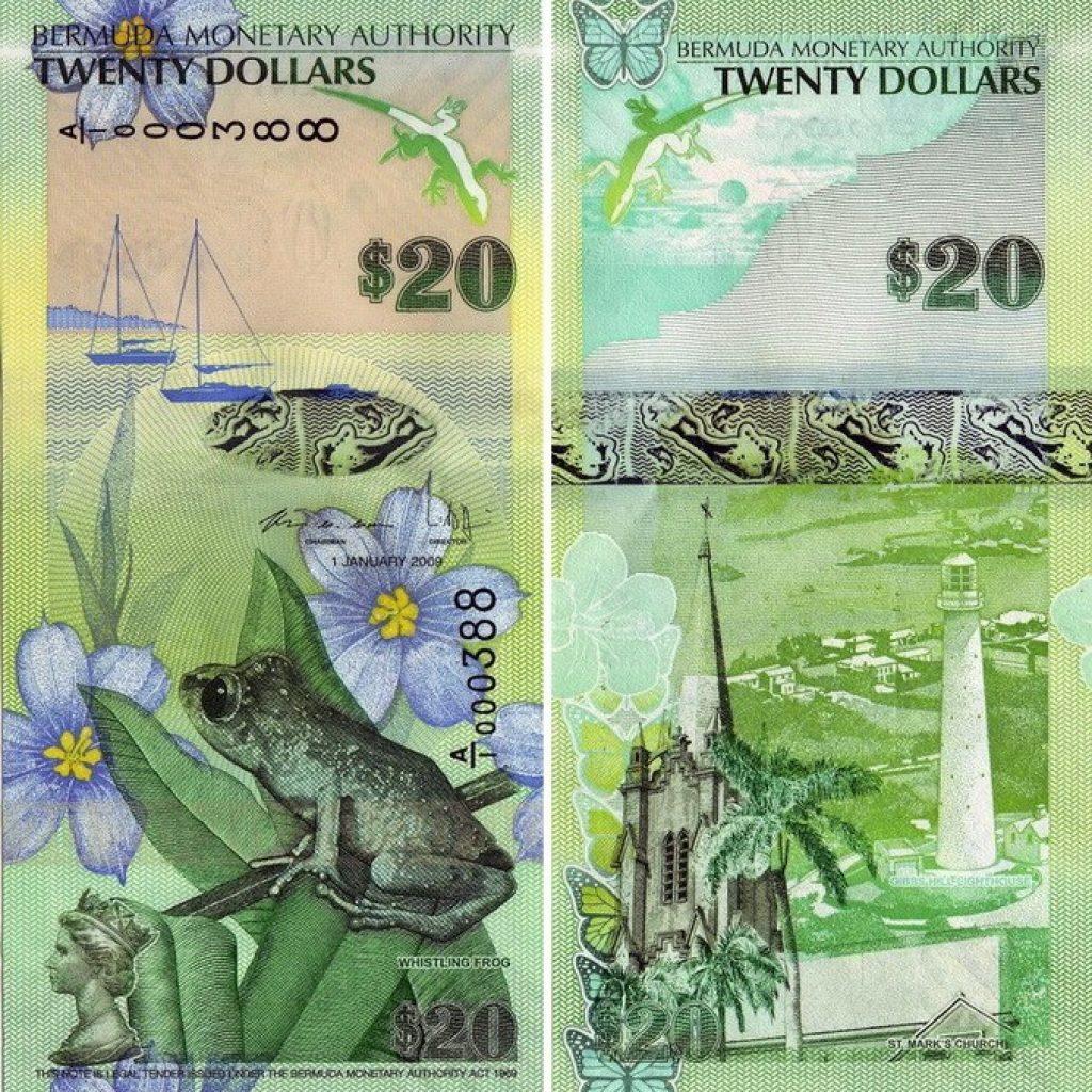 бермудские 20 долларов с лягушкой