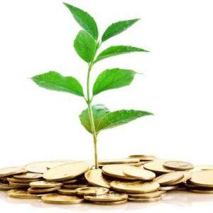 Накопительный вклад: основные особенности и чем отличается от накопительного счета